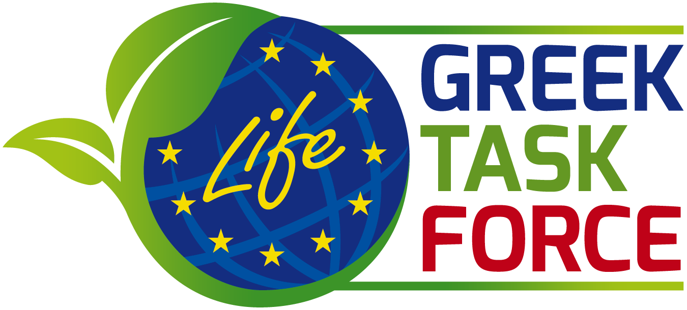 Greek Life Task Force
